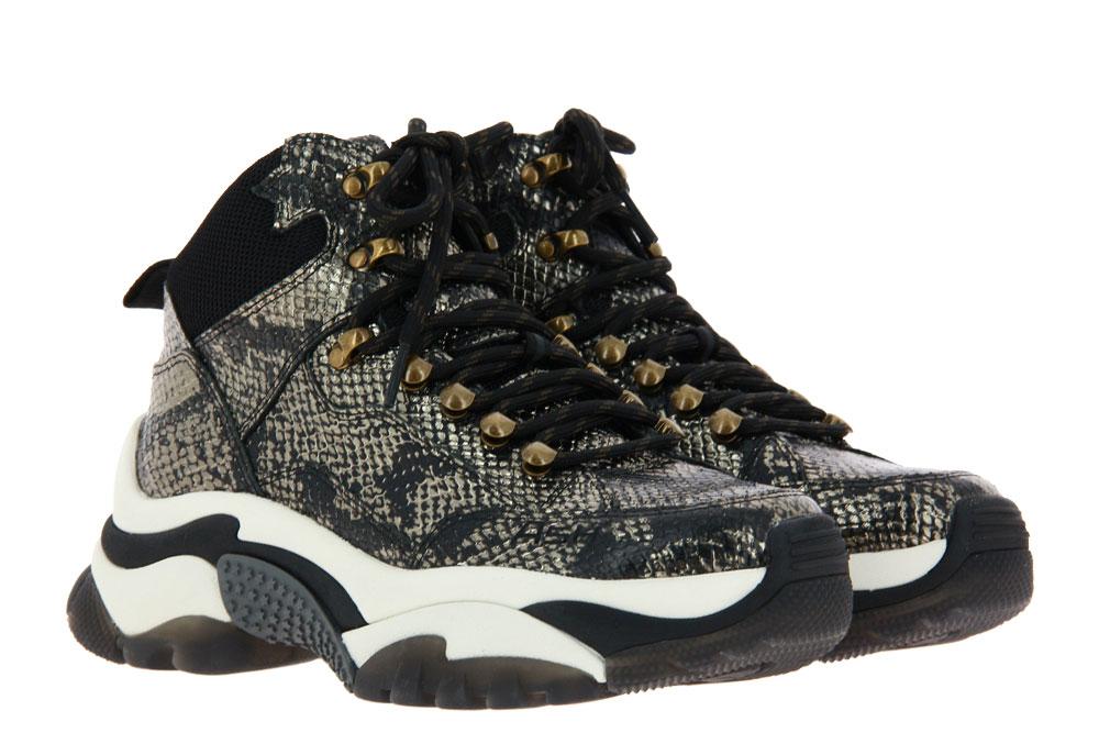 ASH Sneaker ALFA GUN BLACK  (36)