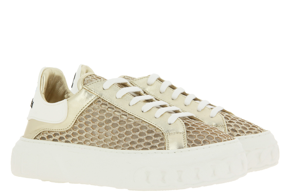 Casadei Sneaker NETWEB ORO